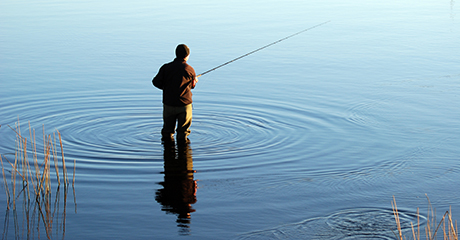 fiskemassa